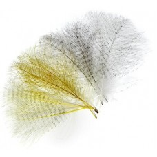 Barred CDC feathers