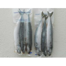 Frozen Mackerel - in-store collection only