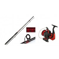 SEA ROD AND REEL COMBO - 10FT